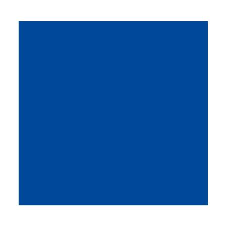 SNP Logo Blue web